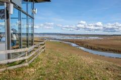 湖Hornborga在瑞典 库存照片