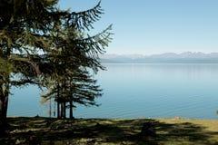 湖Hovsgol的陡峭的树木繁茂的岸 图库摄影