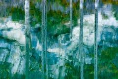 湖Kaindy凹下去的森林  库存照片