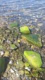 湖Kinneret岸  免版税图库摄影