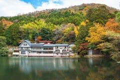 湖Kinrinko在Yufuin,九州,日本 免版税图库摄影