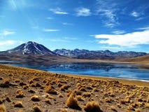 湖Miscanti在智利 库存图片