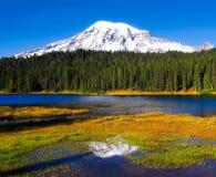 湖mt国家公园更加多雨的反映华盛顿 更加多雨 库存图片