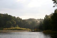 湖o杉木日出 库存照片