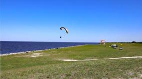 湖Okeechobee海岸线 免版税库存照片