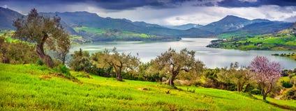 湖Rosamarina的晴朗的早晨全景 免版税图库摄影