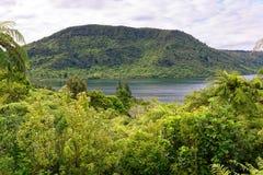 湖Rotokakahi Green湖在罗托路亚 库存照片