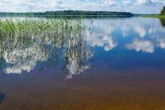湖Seliger。 库存照片