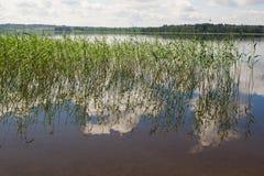 湖Seliger。 库存图片