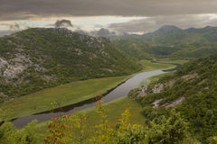 湖skadar的montenegro 免版税库存图片