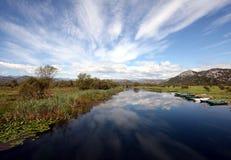 湖skadar的montenegro 库存照片