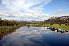 湖skadar的montenegro 图库摄影
