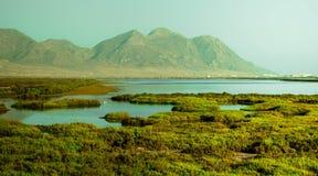 湖surronded的绿色风景 免版税库存照片