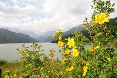 湖tian山的掸人 库存图片