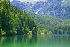 湖Tovel特伦托自治省女低音阿迪杰,意大利 库存图片