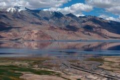 湖Tso Moriri洪泛区高山:桃红色山,河流动入一个蓝色湖,绿色领域,在Himala的夏天 库存照片