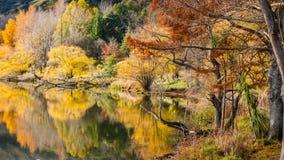 湖Tutira在秋天 霍克的海湾 新西兰 免版税库存照片