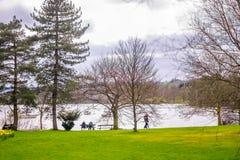湖windermere看法从ambleside的湖区, Cumbria,英国 免版税图库摄影