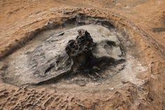 湾里区,新北市,台湾Yehliu Geopark奇怪的岩石风景 免版税库存图片
