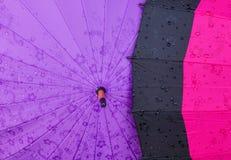 湿伞细节  免版税库存图片
