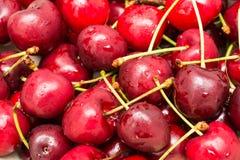 湿和新鲜的红色樱桃 免版税库存照片