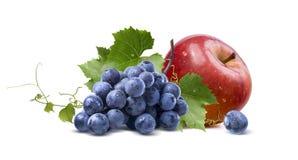 湿在白色背景隔绝的葡萄和红色苹果 免版税库存图片