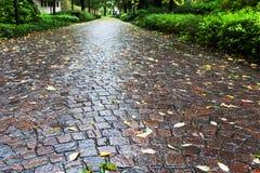 湿大卵石石头路径在parco小山谷竞技场,帕多瓦 库存图片