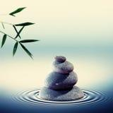 湿小卵石在与竹叶子的水中 库存例证