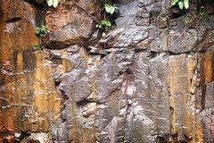 湿岩石的纹理 库存照片