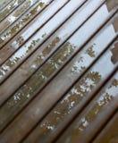 湿村庄甲板 在水坑的反射在木板条在夏天以后下雨 库存照片