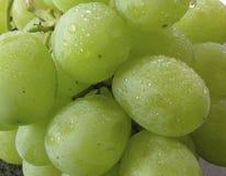 湿束的葡萄 免版税库存图片