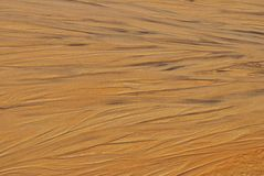 湿沙子的纹理 免版税库存照片