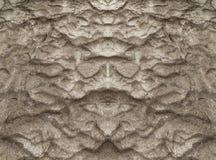 湿沙子纹理 免版税库存图片
