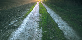 湿泥泞的乡下公路 库存照片