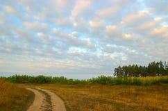 湿泥泞的乡下公路 库存图片