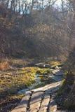 湿泥泞的国家路 免版税库存照片