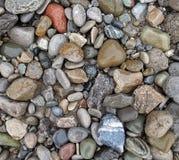 湿海滩小卵石 免版税库存照片
