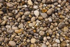 湿海滩的小卵石 免版税库存图片