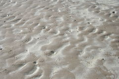 湿海滩的沙子 库存照片