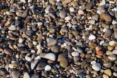 湿海石头 免版税库存图片