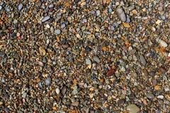 湿海滩小卵石 免版税图库摄影