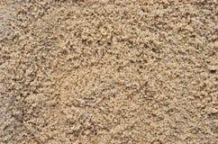 湿海滩沙子 库存图片