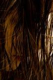 湿的头发 免版税库存照片