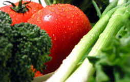 湿的新鲜蔬菜 免版税图库摄影
