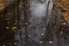 湿的柏油路 免版税库存照片
