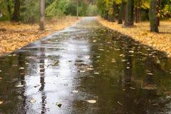 湿的柏油路 图库摄影