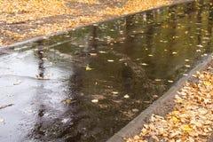 湿的柏油路 库存图片