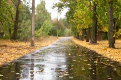 湿的柏油路 免版税库存图片