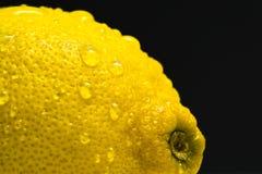 湿的柠檬 免版税库存图片