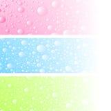 湿的横幅 免版税图库摄影